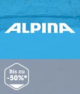 alpina滑雪头盔,雪镜