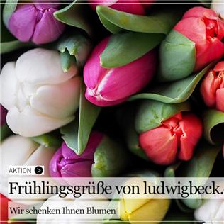 Ludwig Beck 迎春送暖意