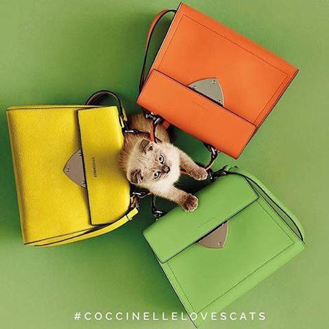 【直邮中国】Coccinelle 意大利轻奢新款包包热卖