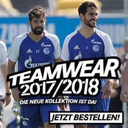迎接Schalke 04足球队中国行