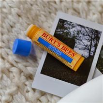 Burt's Bees 小蜜蜂蓝莓&黑巧克力润唇膏