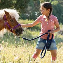 专业骑术装备品牌Horseware 男女童装,马裤皮带,帽子围巾