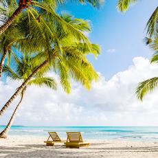 飞去热带的岛屿游泳~多米尼加共和国 Punta Cana之旅