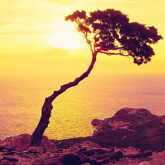 面朝大海 春暖花开 你绝对不能错过的希腊群岛游