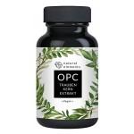高浓度OPC葡萄籽提取物胶囊 花青素美白淡斑