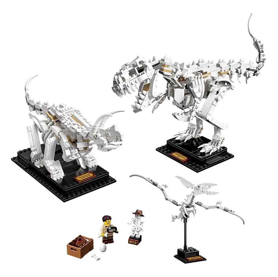 全新发售!LEGO IDEAS系列 恐龙化石