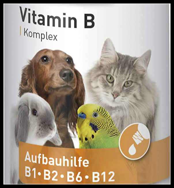 小宝贝食欲不振?精神不好?看看这款宠物维生素B复合物