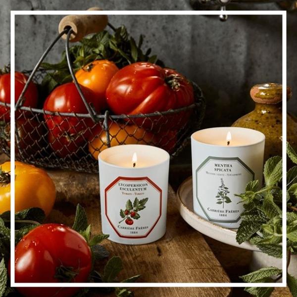 一直缺货的无敌断货王!Carrière Frères 香氛蜡烛室内香氛#Tomato番茄