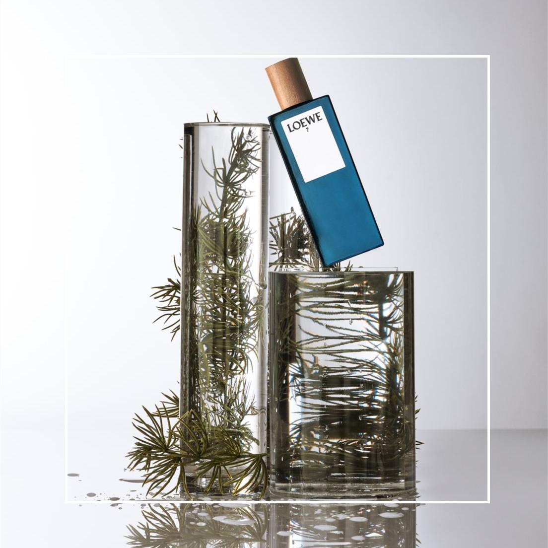 日式庭院里平静的锦鲤池,Loewe/罗意威 第7乐章香水